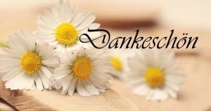 daisy-2313971_640